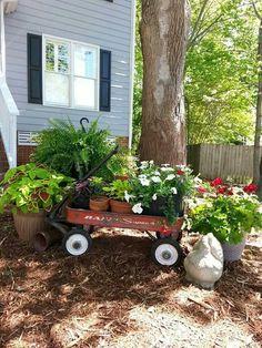 Wagon garden with Coleus, geraniums , petunias and potato vine.