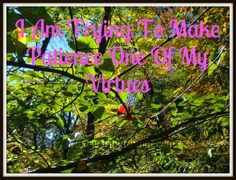 Trying To Make Patience One of My Virtues |TripleZmom, not Supermom