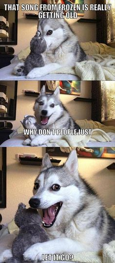 disney movies, funny dogs, husky jokes, song humor, funni pictur, dog humor, frozen funny pictures, haha lol humor jokes funny, dog + let it go