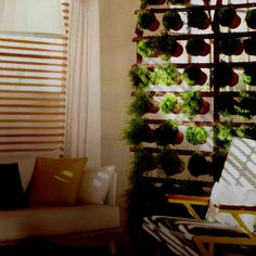 Potted Plant Wall