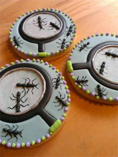 Epicurean Biscuits - ants & magnifying glasses