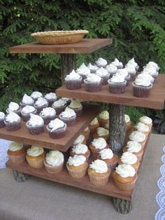 Rustic Wedding Cake Stand Mini Cupcake Stand Dessert Server Log Slice Natural 4 Tier