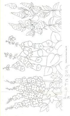 7 - Revital fl - Picasa Web Album