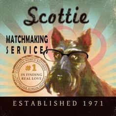 Matchmaking services scotland