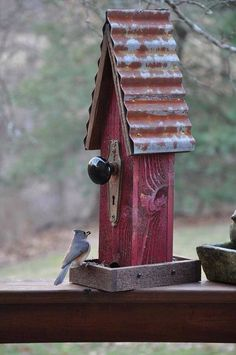 Recycled Bird Feeder birds birdhouse wildlife reuse recycle doorknob feeder country