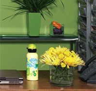 Detox your Office.  Great suggestions from NaturalHealthMag.com