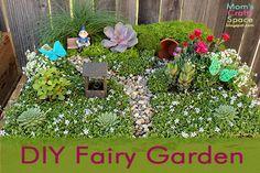 How to make your own fairy garden - super cute idea!