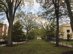 10/8/14 -- Anyone want to go to the mall? We mean Allen Street Mall leading from College Avenue to the Pattee and Paterno Libraries on Curtin Road on University Park campus. Ahhhh, Penn State campuses in the fall make you stop, breath and reflect. What was your favorite spot in autumn at Penn State?