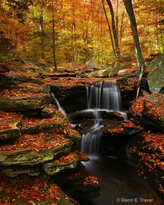 Fall, Ricketts Glen State Park