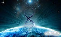 DNA: The Molecule th