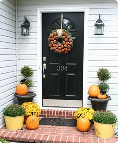 Mums, pumpkins, real shrubs in pots...Fall is here.