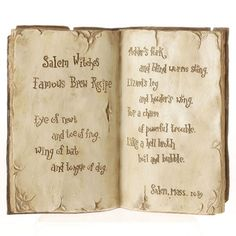 Witch's Open Spell Book - Set of 2 (Both books are the same)