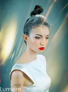 Urban wedding ivory Birdcage veil with freshwater pearls embroidered comb headpiece