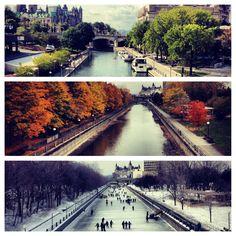 Summer, fall, winter in Ottawa