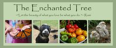 Fantastic blog with amazing ideas.