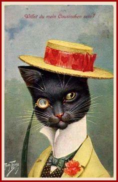 dapper cat vintage postcards, hats, vintage pictures, black cats, paper mache, cat paintings, arthur thiel, blog, illustr