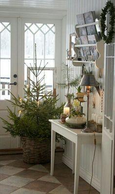 Christmas Tree at entry