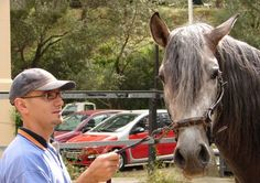 Agente y su caballo  Policía montada  Palma Mallorca Spain