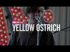 Yellow Ostrich at Mercury Lounge (04/12/2012)