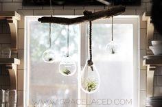 DIY hanging air plant terrarium garden.   gracelaced.com