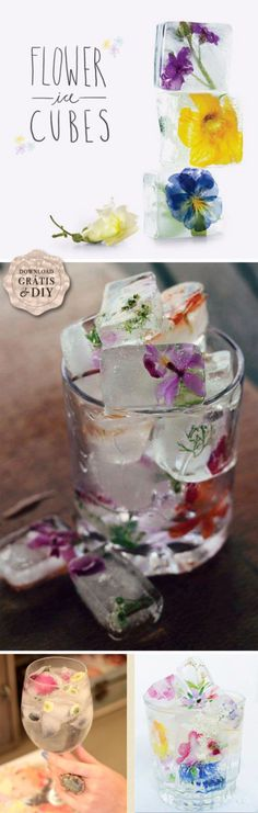 Pretty edible flowers in ice cubes.