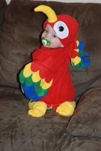 parrot costume tutorial