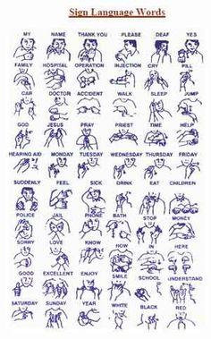 asl books for beginners | Learning Modern American Sign Language | Rocket Sign Language Premium ...