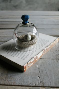 ,,**  Glass Cloche with Vintage Glass with Blue Paint Knob