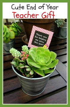 DIY End of Year Teacher Gift - teachers plant the seed of knowledge that will grow forever.