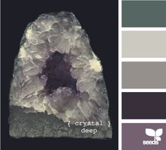 crystal deep . . . the dark brown on one wall and purple on another in the bedroom?