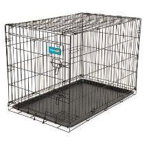"Home Training Dog Wire Kennel Size: 43.4"" X 29.3"" X 31"""