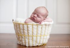 NAPCP » Baby Posing: Knowing what to look for in a newborn photographer