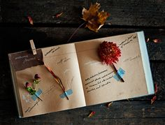 color of the paper, dark background, & notes on pages | bywstudent