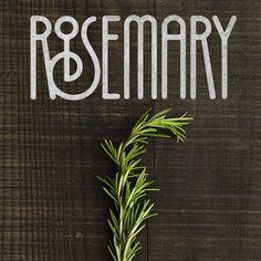 rosemary type