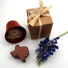 100 Texas Themed Wedding Favors Texas Bluebonnet Seed Party Favors Handmade in Texas