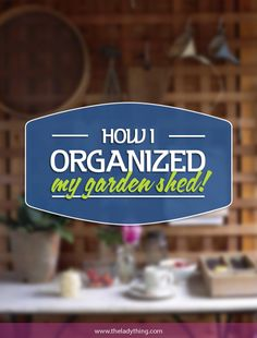 How I Organized My Garden Shed