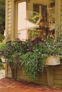 Love the store-front like picture window and the flower bed overflowing with plants.
