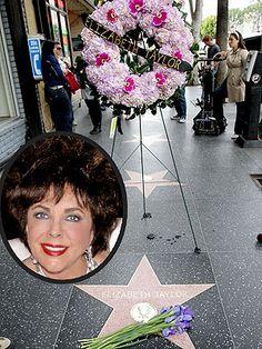 A memorial begins at Taylor's Hollywood Walk of Fame star