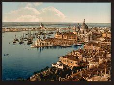 libraries, color 1890, circa 1890s, dream come true, di venezia
