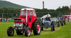 I love tractors...