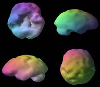 Brain Based Teaching explained Source  http://www.ringaroundthephonics.com/articles.htm#A11