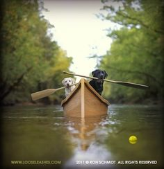 Canoeing Labs.