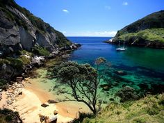 New Zealand: Great Barrier Island
