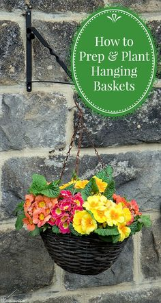 How to Prep & Plant Hanging Baskets