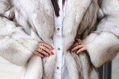 fur fur fur!!!!!!! Blue fox