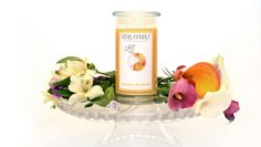 Peaches And Cream Ring Candle  With our new Ring Candles you can now pick your own ring size =) A Perfect Fit Every Time!   Nothing like a Georgia Peach right?!?! Now imagine that delicious Ga Peach with some yummy whipped cream!!! Our new Peaches and Cream Jewelry Candle is truly the scents of fresh picked peach with sweet smooth cream!