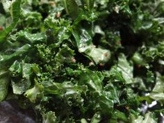 ABC Kitchen kale salad with mint and Serrano chiles.