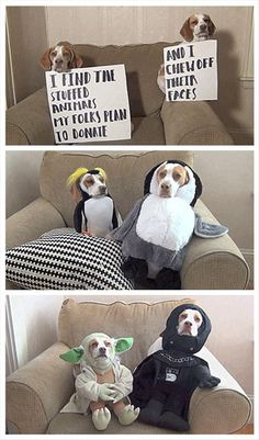 Funny Pictures Of The Day – 83 Pics