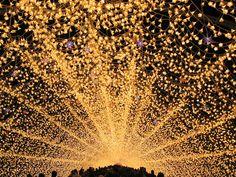 Japan's Spectacular Tunnel of Lights - I wanna go now!!!