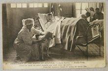 WW1 French Heroic Dog Postcard heroic dog, dog postcard, ww1 dog, dog hero, antiqu dog, vintag dog